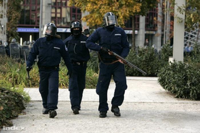 Felsőbb utasításra nem vonták felelősségre az elszabadult rebiszeseket Fotó: csepel.info