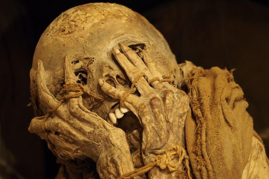 mummyfacepalm
