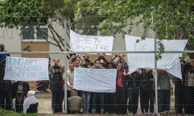Kiskunhalas, 2016. június 2. Ismét csoportokba verõdve tiltakoznak a migránsok a Kiskunhalasi Menekültügyi Õrzött Befogadó Központ Szegedi úti telephelyén 2016. június 2-án. A Bács-Kiskun megyei befogadóközpontnál továbbra is fokozott a rendõri jelenlét. Az elõzõ nap is volt tiltakozás, akkor jobb körülményeket és gyorsabb ügyintézést követeltek az illegális bevándorlók. MTI Fotó: Ujvári Sándor