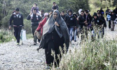 bevándorlók (index.hu)