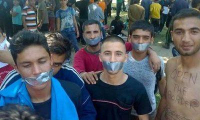 ehsegsztrajkba-kezdtek-migransok-belgradban
