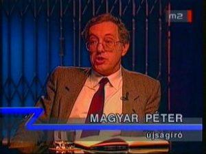 Magyar Péter a szakértő / Forrás: NAVA.hu