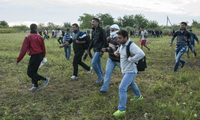 migránsok - déli határ (4024.hu)