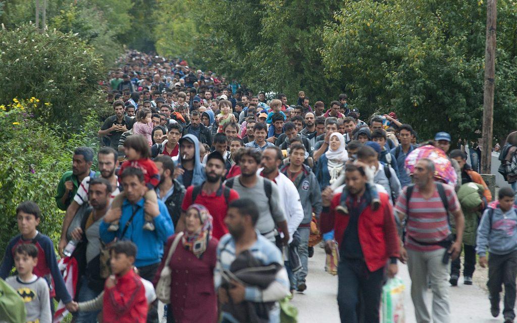 Gazdasági bevándorlók és menekültek (kép: MTI / Krizsán Csaba)
