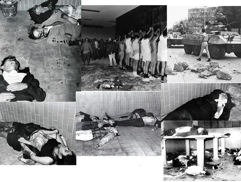 Képek, kommentár nélkül /Fotó: Survivingmexico.com
