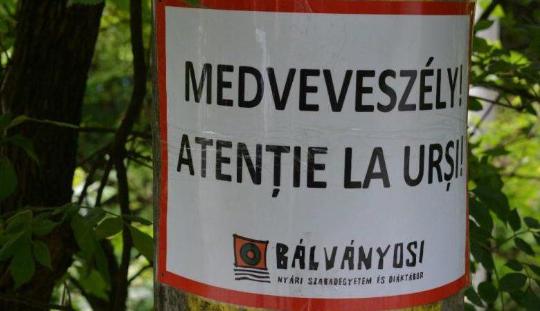 A Jobbik egyetlen dokumentumot sem tudott benyújtani b6ba276a7b