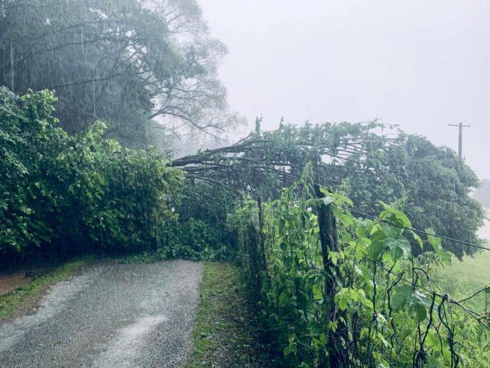 A kőgörgetegek mellett az utakra dőlt fák is megnehezítik a mentést. Fotó: Facebook