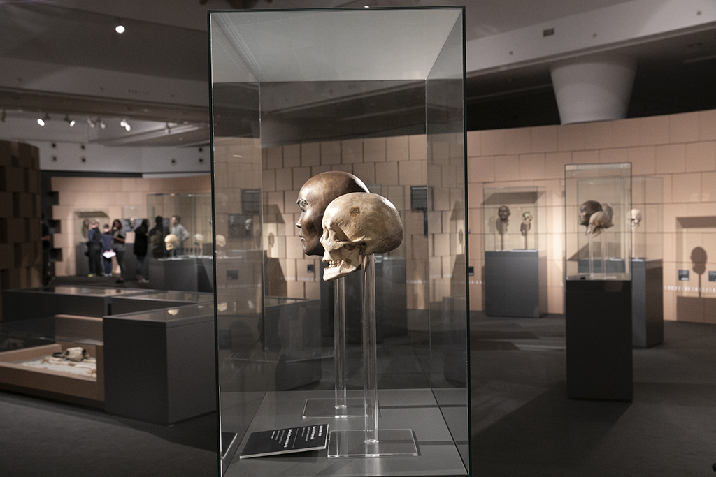 természettudományi múzeum gyors randevú