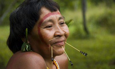 brazil őslakos