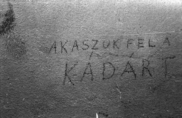 Falfirka. Fortepan / Budapest Főváros Levéltára. Levéltári jelzet: HU.BFL.XV.19.c.10