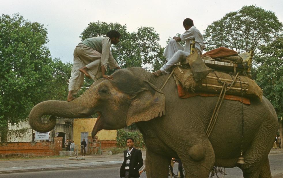India, Delhi / Fotó: Fortepan.hu, ad.: Löw Miklós